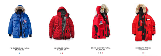 goose jacket.png